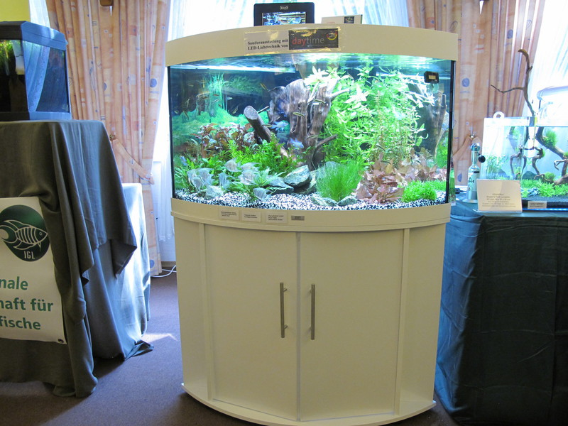Juwel Aquarium Mit Led Beleuchtung | Homepage Titel Inspirationen